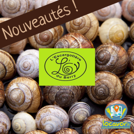 Escargots du Berry
